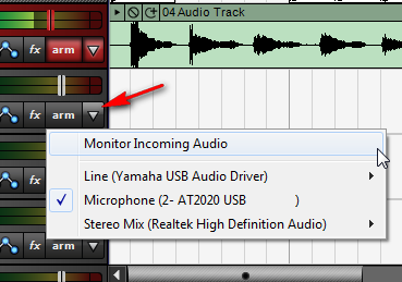 "Click on the small arrow next to the Arm button on an audio track and select ""Monitor Incoming Audio."""